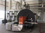 低氮燃气导热油炉