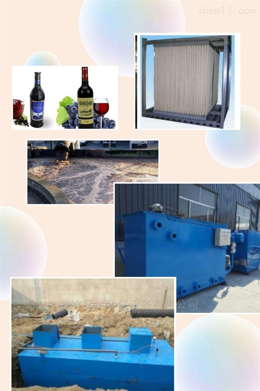 衢州市蓝莓酒厂污水处理设备RL-MBR膜一体化