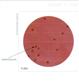 HiTouch™ 高灵敏度大肠菌群计数平板