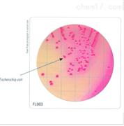 HiTouch™ 大肠菌群计数平板
