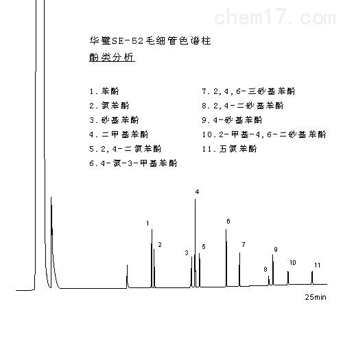 雷竞技s10竞猜SE-52毛细管雷竞技官网手机版下载柱