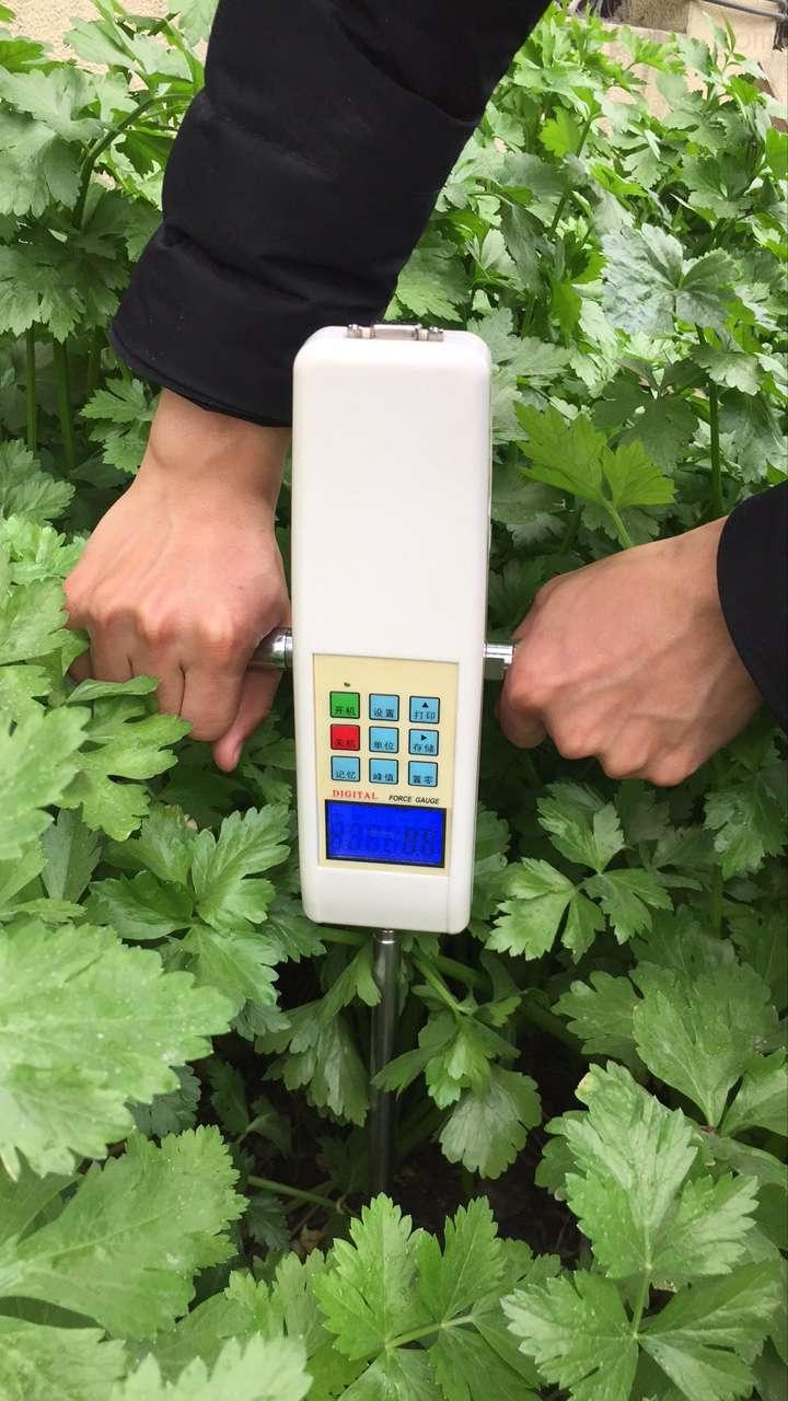 TYD-2数显土壤硬度计、土壤紧实度仪