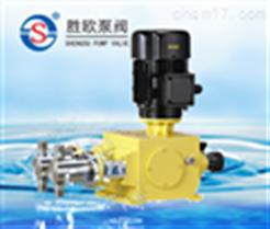 2JX型双泵头柱塞式计量泵