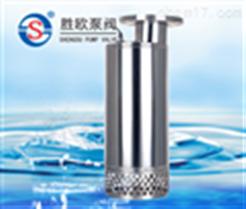 QN不锈钢潜水泵(大流量型)