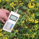 TWS-2260土壤温湿度自动记录仪