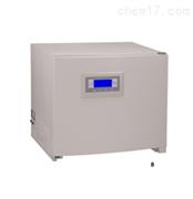 上海福玛DPX-9082B-2精密型电热恒温培养箱