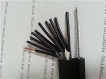 HYA22-30*2*0.5铠装通讯电缆