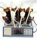 智能型BOD测定分析仪——BOD801
