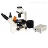 荧光显微镜多少钱