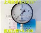 YA-100氨用壓力表0-0.1Mpa