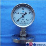 Y-100BF/MF不锈钢法兰式隔膜压力表