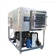 大型冷冻干燥机冻干机 水蛭冻干粉设备