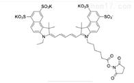 标记蛋白Sulfo-Cy5.5 NHS ester水溶性cy5.5荧光染料