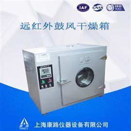 上海厂远红外鼓风干燥箱10AYA-1