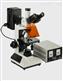 荧光显微镜厂家