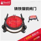 MZY-200MZY圆形铸铁镶闸门 专业定制