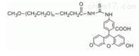 荧光PEG衍生物mPEG-FITC甲氧基聚乙二醇荧光素PEG