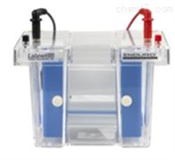 Labnet Enduro™垂直电泳系统