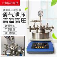 厂家直销微型高压反应釜HGWX-100ML