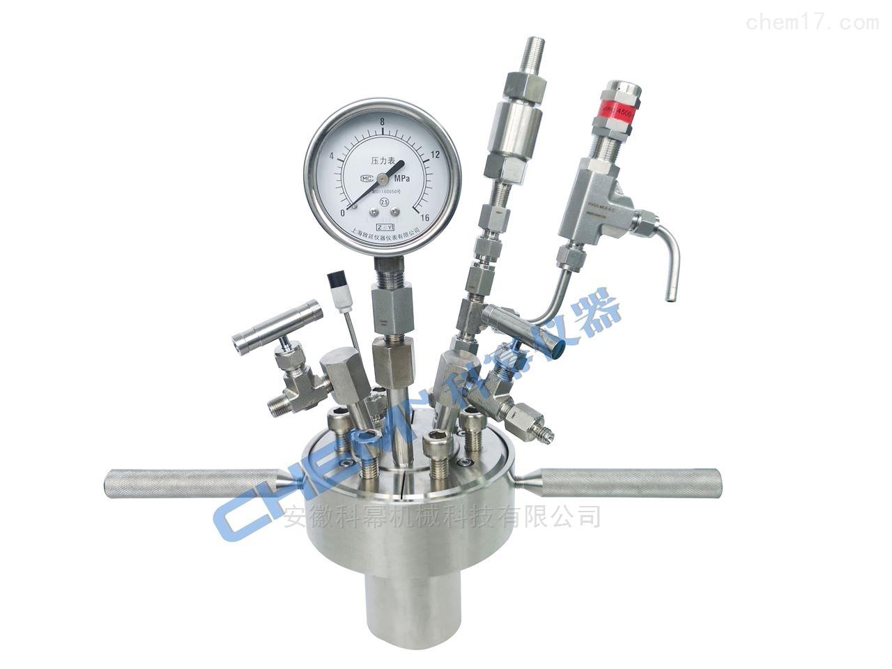 NSG通用型快開式磁力攪拌反應釜