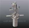 法兰式高性价比型机械搅拌反应釜