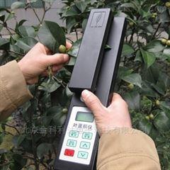 YMJ-A YMJ-B植物叶面积测量仪厂家