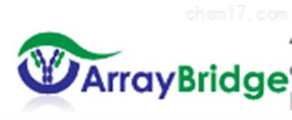 Array bridge授权代理