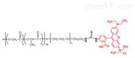 PLGA-PEG-RB MW:2000/三嵌段共聚物