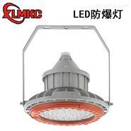 BZD180-099粉尘led防爆照明灯100W/200W
