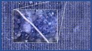 全自动根系监测系统 AMR-B