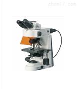 實驗室研究級正置顯微鏡