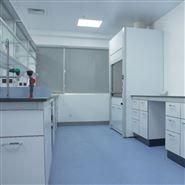实验台,通风柜,广州实验室家具厂家
