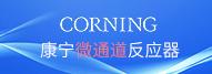 康宁(上海)管理有限公司