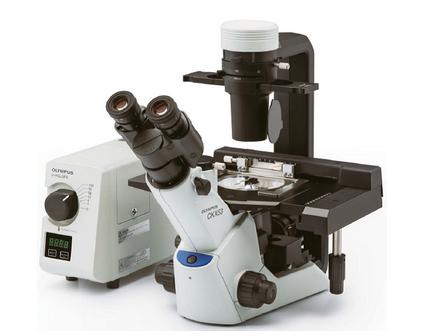 <strong>OLYMPUS奥林巴斯倒置生物显微镜CKX53</strong>产品图片