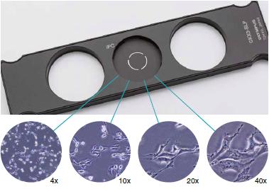 <strong>OLYMPUS奥林巴斯倒置生物显微镜CKX53</strong> IPC系统