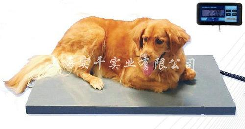 宠物体重秤