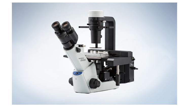 奥林巴斯CKX53倒置显微镜