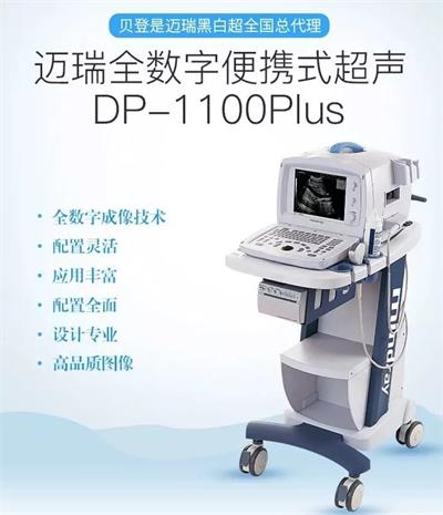 迈瑞便携式黑白b超机DP-1100Plus