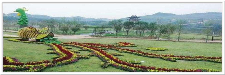 金索坤公司动态-生态农业