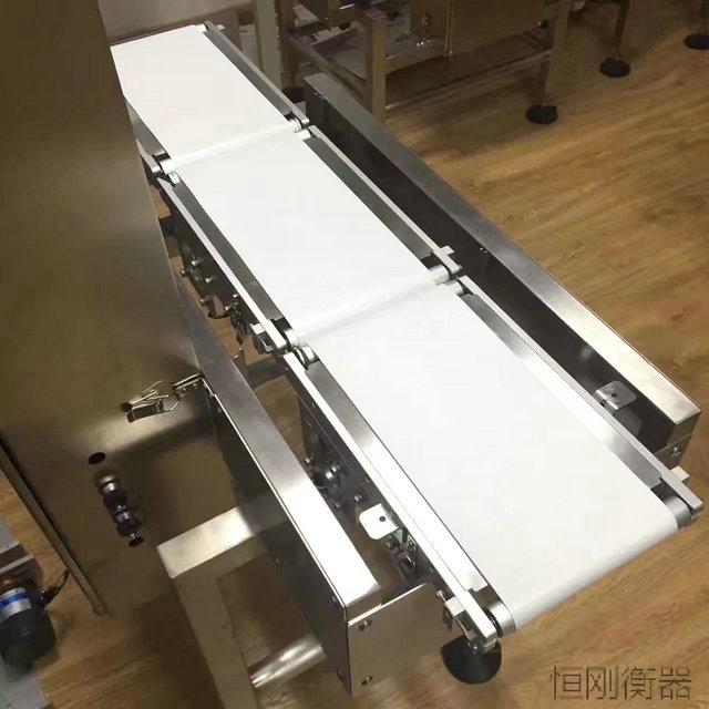 皮带输送自动称重机