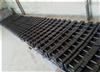 浙江20公斤铸铁砝码找厂家