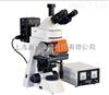 BM2000Z启步BM2000Z荧光显微镜厂家