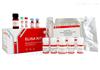 SEKM-0002大鼠白介素1β ELISA试剂盒 Solarbio