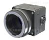 5000万高性能CCD相机 RMV-50100