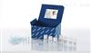 Qiagen现货提取高纯度质粒DNA试剂盒