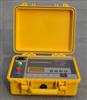 TE2385水内冷发电机绝缘电阻测试仪